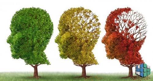 Почему ухудшилась память? Это временно или уже навсегда?