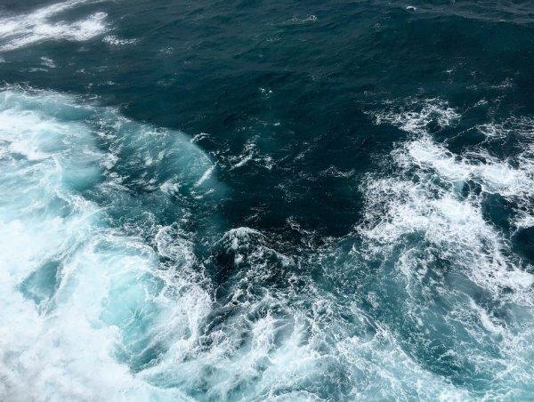 На дне Марианской впадины обнаружили большое ртутное загрязнение