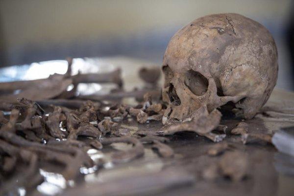 Связанные останки неизвестного обнаружили у храма в Ленобласти