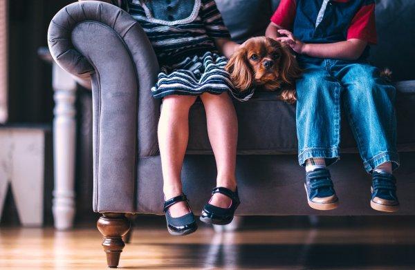 Близкая дружба ребёнка с собакой улучшает эмоциональное и социальное развитие малыша; Фото: Pixabay